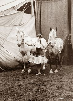 Trick rider with her horses.