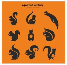 Cute squirrel vectors