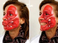 Such a cool idea showing the muscles of the face! there are many muscle… Such a cool idea showing the muscles of the face! there are many muscles that effect facial expression. Facial Muscles Anatomy, Human Body Anatomy, Muscle Anatomy, Head Anatomy, Anatomy Art, Anatomy Drawing, Dental Anatomy, Medical Anatomy, Muscles Of The Face