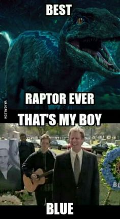 After watching Jurassic World so true! Funny Photos, Best Funny Pictures, 9gag Memes, Jurassic World 2015, World Movies, The Lost World, Prehistoric Creatures, Raptors, Movie Quotes