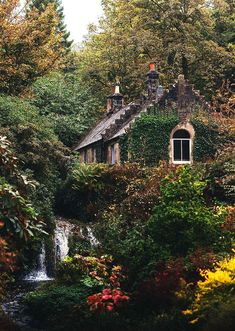Idyllic English Country Villages Country cottage in the Forest Cottage In The Woods, Cozy Cottage, Cottage Homes, House In The Forest, Forest Home, Fairytale Cottage, Garden Cottage, Fairytale Bedroom, Forest Cottage