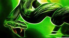 Christina Ricci Christina Ricci in Black Snake Moan Wallpaper Snake Wallpaper, Wallpaper Backgrounds, Black Snake Moan, Snake Images, Cool Snakes, 4k Uhd, Wallpaper Free Download, Hd Desktop, Fractal Art