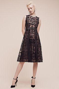 Nanette Lepore Avant Lace Dress
