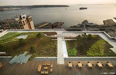 washington mutual center roof garden - Google Search