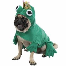 The perfect disguise for your #pet prince charming! Made of lightweight green plush with velcro closures, webbed feet and bulging eyes add ribbet-ing detail!