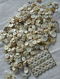 Antique shell buttons. Love the natural colors.