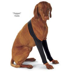 Leg Protectors. Comfortable leggings protect your dog's forelegs and allow them to heal by discouraging licking or biting. Effective for relief of allergies, wounds, hotspots or injuries, they slip on easily, stretching to accommodate casts or wound dressings, with a snug yet flexible fit that allows normal activity.