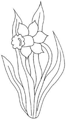 Daffodils Coloring Page 11 Is A From FlowersLet Your Children Express Their Imagination When They Color The