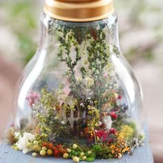 homedecor pictures DIY Project - Craft Ideas - Home Decor - amazing tiny house with unbelievable details! Many pictures at link. Miniature Rooms, Miniature Crafts, Miniature Houses, Miniature Furniture, Fake Flowers Decor, Flower Decorations, Clay Fairy House, Fairy Houses, Moss Plant