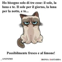 https://www.facebook.com/IroniaBastardissima