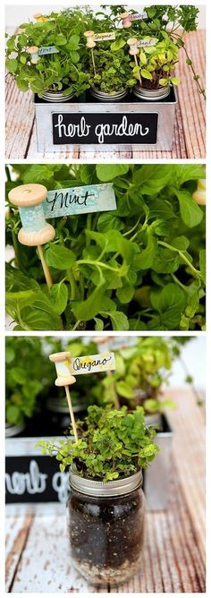 DIY Herb Garden & Plant Markers. Cute garden idea! #herbgardening