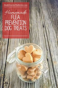 Homemade Dog Treats that Prevent Fleas ...and your dog will LOVE them! Made with just 2 healthy ingredients.