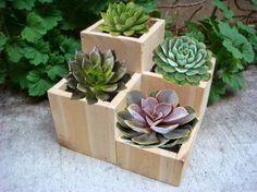 Flower planter, garden flower pot, cedar wood, tab...