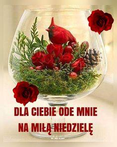 Wine Glass, Good Morning, Wine Bottles
