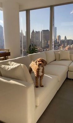 Apartment View, Dream Apartment, York Apartment, City Aesthetic, Aesthetic Rooms, Beige Aesthetic, Summer Aesthetic, Apartamento New York, Nyc Life