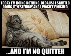 No Quitter.....