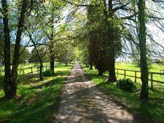 105 MANESTAR ROAD, Beaconsfield Upper, Vic 3808