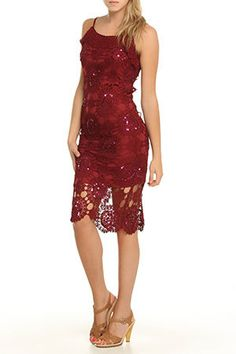 Ariella  Crochet Dress In Wine  $95.00