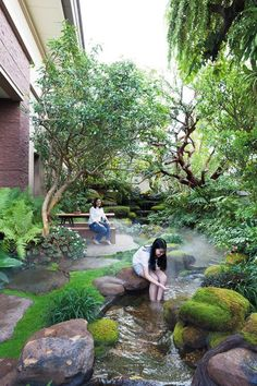 37 ideas backyard patio garden landscape design front yards for 2019 Pond Landscaping, Ponds Backyard, Tropical Landscaping, Modern Landscaping, Tropical Garden, Backyard Patio, Landscaping Design, Florida Landscaping, Backyard Privacy