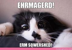 Ehrmagerd!, Erm Sqwershed!