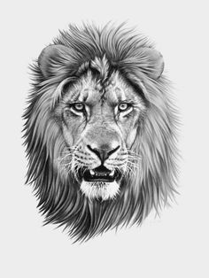 Instinct animal beard e liquid uk - Beard Lion Tattoo With Crown, Lion Head Tattoos, Mens Lion Tattoo, Cat Tattoo, Body Art Tattoos, Tattoos Skull, Animal Sketches, Animal Drawings, Lion Photography