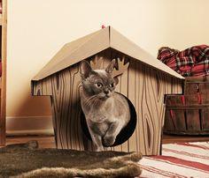 Pet Canadian Cabin