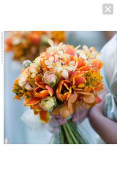 More tulips- love color
