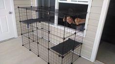 Cat Enclosure Construction - Imgur