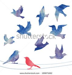 Set of birds silhouettes - flying, sitting. - stock vector
