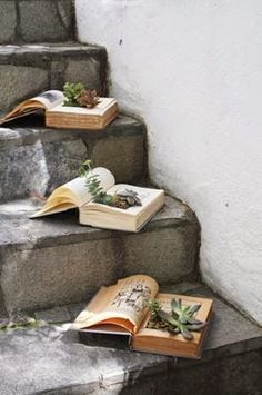 How To Make Your Own Book Planters for Succulents