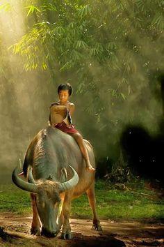 West Java village, Jakarta… My children rode a carabao in the Philippines. People Around The World, Around The Worlds, Timor Oriental, Kind Photo, World Cultures, Beautiful Children, Belle Photo, Great Photos, Amazing Photos