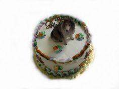 Multi-Color Doggie Cake