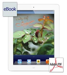 #Sakshibhav #e-Book - સાક્ષીભાવ  Price: INR 500.00 Author: Narendra Modi Publisher: Image Publications Categories: Life Oriented