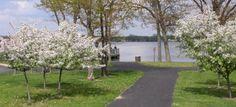 Lakeview Park; Portage, MI