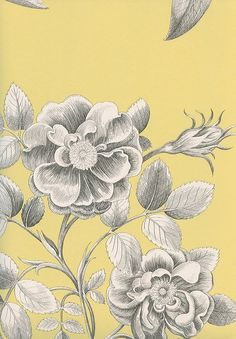 Etchings & Roses Wallpaper Black and pearlised white floral design on a yellow background
