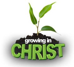 """Although many voices today are heralding the numerical growth of Christianity around the world, other voices like myself, are concerned with the spiritual superficiality and carnality of many of these professing believers upon closer scrutiny. It is true that there are much more Christians than ever before in history, however, it is """"growth without depth"""",  lacking biblical discipleship…READ MORE: http://wp.me/p7z0FU-4C"""