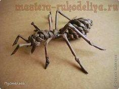 Tecelagem jornal master-class: Formiga