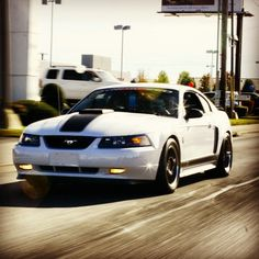 White Mach 1 Mustang