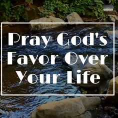 offers short videos that will impact your life and encourage you throughout that day. Prayer Verses, Faith Prayer, God Prayer, Prayers Of Gratitude, Spiritual Prayers, Good Morning Prayer, Morning Prayers, Gods Love Quotes, Quotes About God