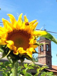 Le foto dei lettori - Il campanile di San Bernardo Cassano Magnago fotografato da Daniele Banfi