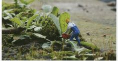 Feeling small?  In context   In context Scale.  Slinkachu. (2008) Weed Surgeon [Photograph] In: S...
