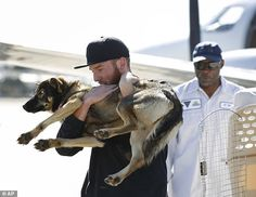 Saved: Conner Lamb carries Luna, a 1 1/2-year-old dog that fell off a fishing boat in Febr...