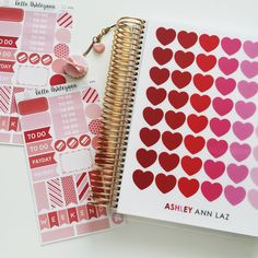 One of my February #erincondren covers with a charm from @pufftique and planner stickers from Hello Ashleyann on Etsy! #helloashleyann #planner #stickers