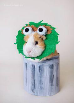 This costume wins Halloween!