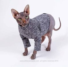 Ready to ship pre made Cat Clothes Pet Sun Protection safe SPF Long Sleeved SunScreen safe outdoors dog shirt or Sphynx Cat Clothes SPF 50 by SimplySphynx