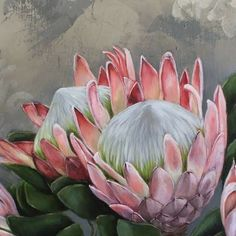 Proteas On Canvas Protea Art, Protea Flower, Botanical Illustration, Botanical Prints, Watercolor Flowers, Flower Art, Painting & Drawing, Canvas Wall Art, Art Projects