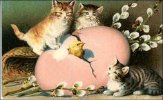 Let's just focus on the idealized world of the kitties and baby chicks on these vintage Easter cards and leave it at that! Description from vintageholidaycrafts.com. I searched for this on bing.com/images