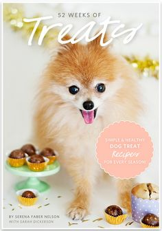 52 Weeks of Treats by Serena Faber Nelson and Sarah Dickerson. I LOVE every page of this beautiful little recipe book for dogs. Miles gives it 2 paws up!!