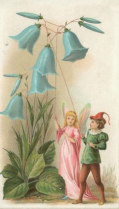 old image of fairies and bluebells