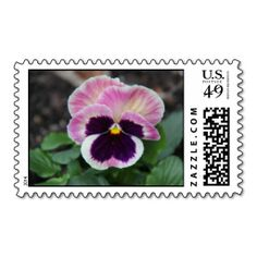 Purple Pansy Stamps